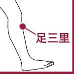 病気の予防・体力回復のツボ『足三里』 ~生理不順・胃炎などにも