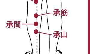 足の疲れ・足のむくみに効くツボ『委中』『承筋』『承間』『承山』