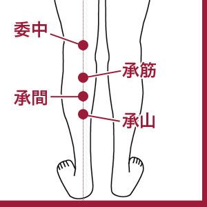 足のむくみに効くツボ 委中 承筋 承間 承山